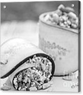 Cucumber Rolls Black And White Acrylic Print