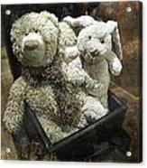 Cuddle Toys Acrylic Print