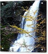 Cullasaja's Dry Falls Acrylic Print