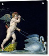 Cupid Being Led By A Pair Of Swans Acrylic Print