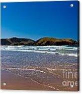 Curio Bay On South Coast Of New Zealand South Island Acrylic Print