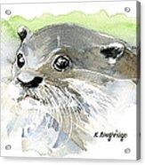 Curious Otter Acrylic Print
