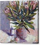Cut Proteas Acrylic Print