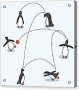 Cute Penguin Art Acrylic Print