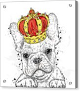 Cute Puppy Wearing A Crown. French Acrylic Print