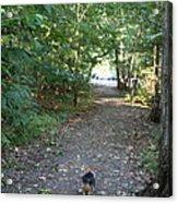 Cutest Dog Ever - Animal - 011352 Acrylic Print
