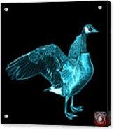 Cyan Canada Goose Pop Art - 7585 - Bb  Acrylic Print