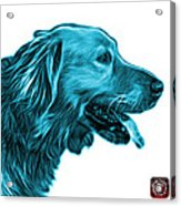 Cyan Golden Retriever - 4047 Fs Acrylic Print
