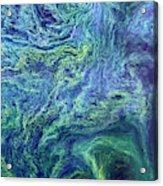 Cyanobacteria Bloom Acrylic Print