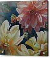 Cynthia's Dahlias Acrylic Print