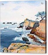 Cypress And Seagulls Acrylic Print