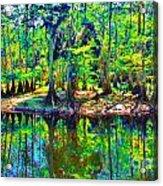 Cypress Coast Acrylic Print