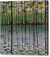 Cypress Garden Acrylic Print by Richard Goohs