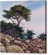 Cypress Garden Acrylic Print