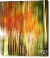 Cypress Pond Acrylic Print by Scott Pellegrin