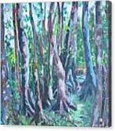 Cypress Swamp Acrylic Print
