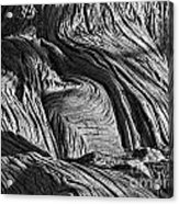 Cypress Tree Abstract Acrylic Print