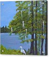 Cypress Trees At Lake Marion Acrylic Print