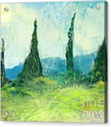 Cypress Trees On A Hill Side Acrylic Print