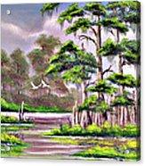 Cypress Trees-wakulla River Florida Acrylic Print