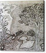 Cypresses In Cyprus Acrylic Print
