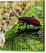 D Bugg Acrylic Print