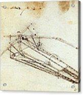 Da Vinci Flying Machine 1485 Acrylic Print
