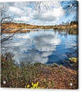 Daffodil Lake Acrylic Print by Adrian Evans