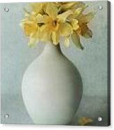 Daffodils In A White Flowerpot Acrylic Print