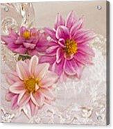 Dahlias And Lace Acrylic Print
