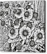 Daisies In Relief Acrylic Print