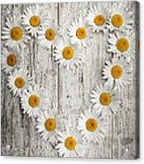 Daisy Heart On Old Wood Acrylic Print
