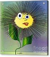 Daisy May Acrylic Print