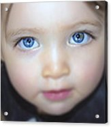 Dakota's Eyes Acrylic Print