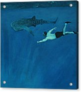 Dale Vs. The Whale Shark Acrylic Print by Patrick Kelly