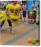 Dance Troupe Performs Chinese Lion Dance Singapore Acrylic Print