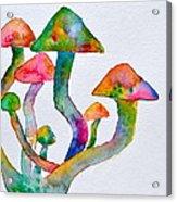 Dancing Cubensis Acrylic Print