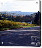 Dancing Leaves On A Country Road Acrylic Print
