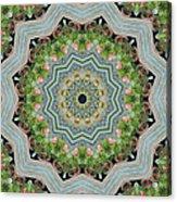 Dancing Mandevilla Blossom Kaleidoscope Acrylic Print