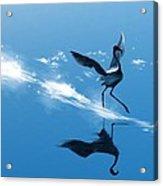 Dancing On Water Acrylic Print