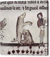 Dancing Pig, 14th Century Acrylic Print