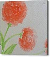 Dandelion Garden  Acrylic Print