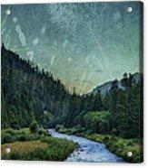 Dandelion Moon Acrylic Print