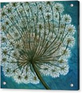 Dandelion Painting     Sold Acrylic Print