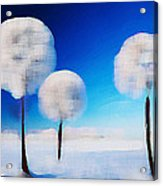 Dandelion Puffs In Winter Acrylic Print