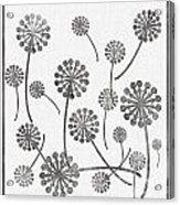 Dandelion Seeds Grey Acrylic Print