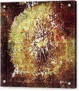 Dandelion Wild Life Acrylic Print