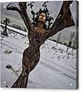 Daphene Sculpture On A Winter Day Acrylic Print