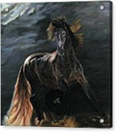 Dappled Horse In Stormy Light Acrylic Print