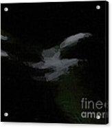 Dark Back Acrylic Print
